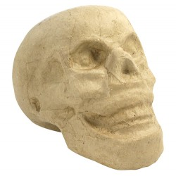 Crâne en papier maché - 15x9x12 cm