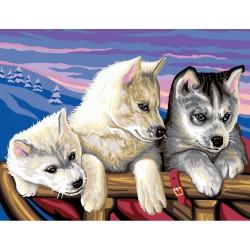 Peinture par numéros 30x40cm - Dans le Grand Nord