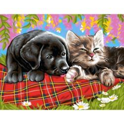 Peinture par numéros 30x40cm - Comme chien et chat