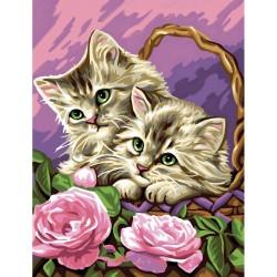 Peinture par numéros 30x40cm - Les chatons rêveurs