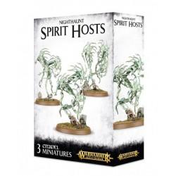Set 3 figurines à peindre Warhammer Age of Sigmar -Spirit Hosts