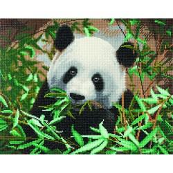 Kit tableau à diamanter Crytal Art 40x50cm - Panda