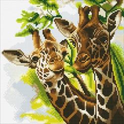 Kit tableau à diamanter Crytal Art 30x30cm - Girafes