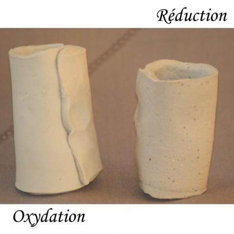 Terre à grès blanc GB8 chamottée 0-0,5mm, pain 10kg