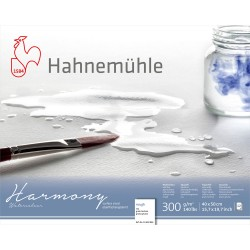 Blocs aquarelle Harmony 300g/m², 12 fls collées 4 côtés